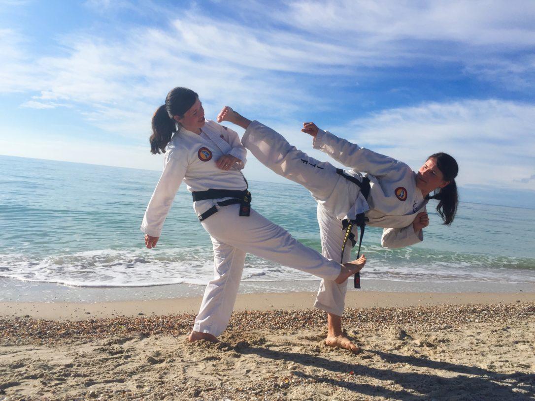 domnișoare taekwondo