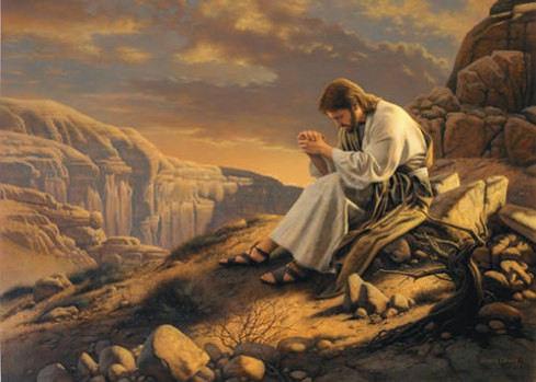 Why Christians don't fast 40 days as Jesus did?