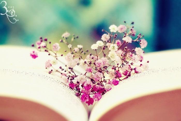 cele cinci limbaje ale iubirii
