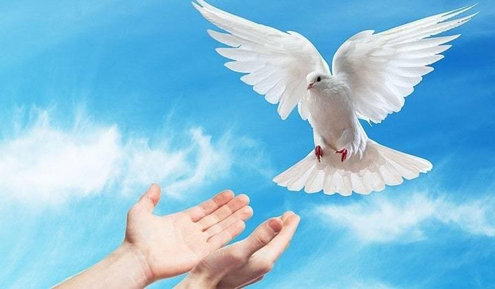 Какие шансы войти в Царство Божье имеет тот, кто был крещен, но не имеет Святого Духа?