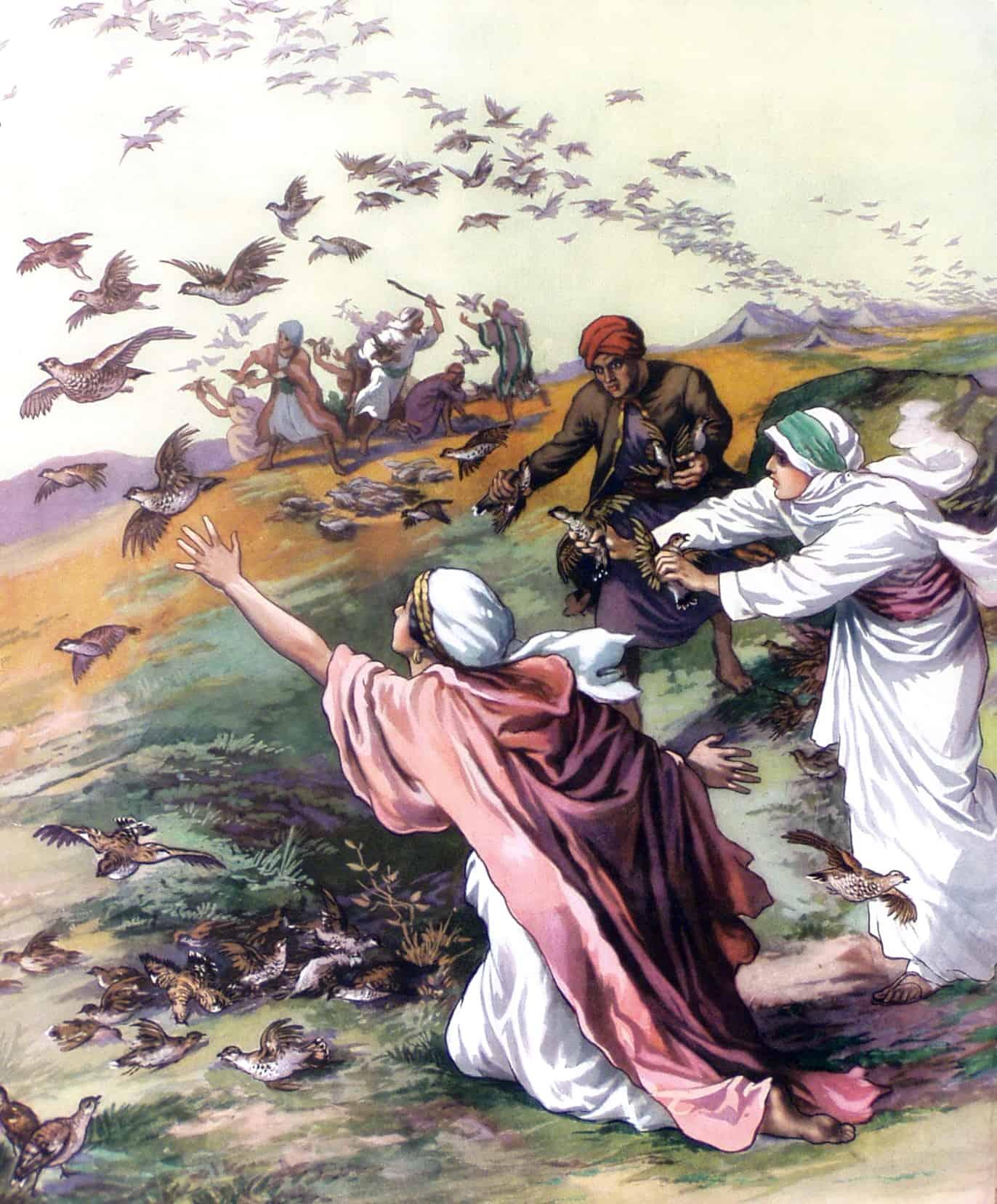 библейские истории с картинками эти аномалии могли
