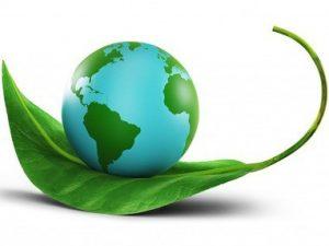 отходы и окружающая среда. сокращение отходов
