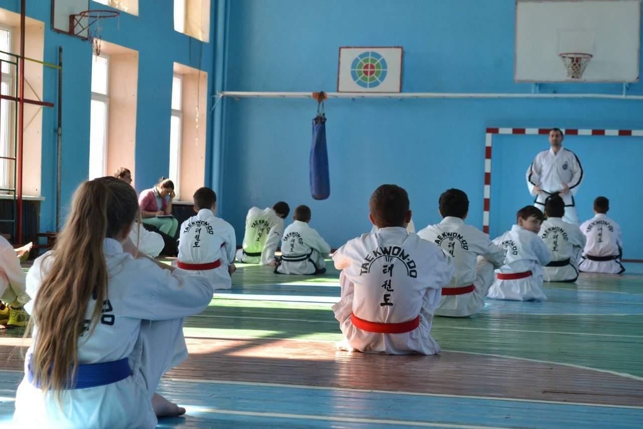 Facerea de ucenici prin intermediul Taekwon -Do - Radu Filat