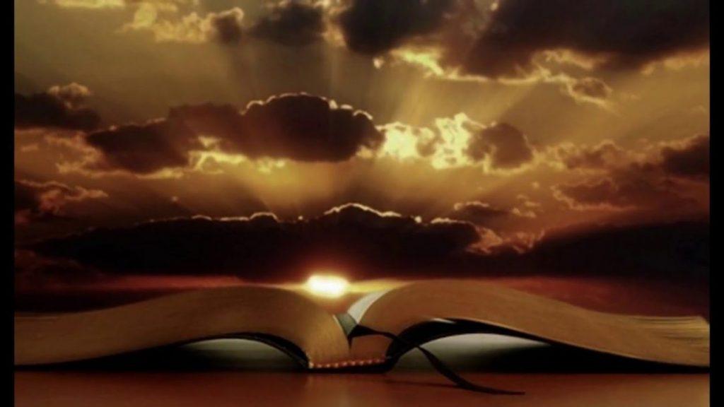 cartea vieții