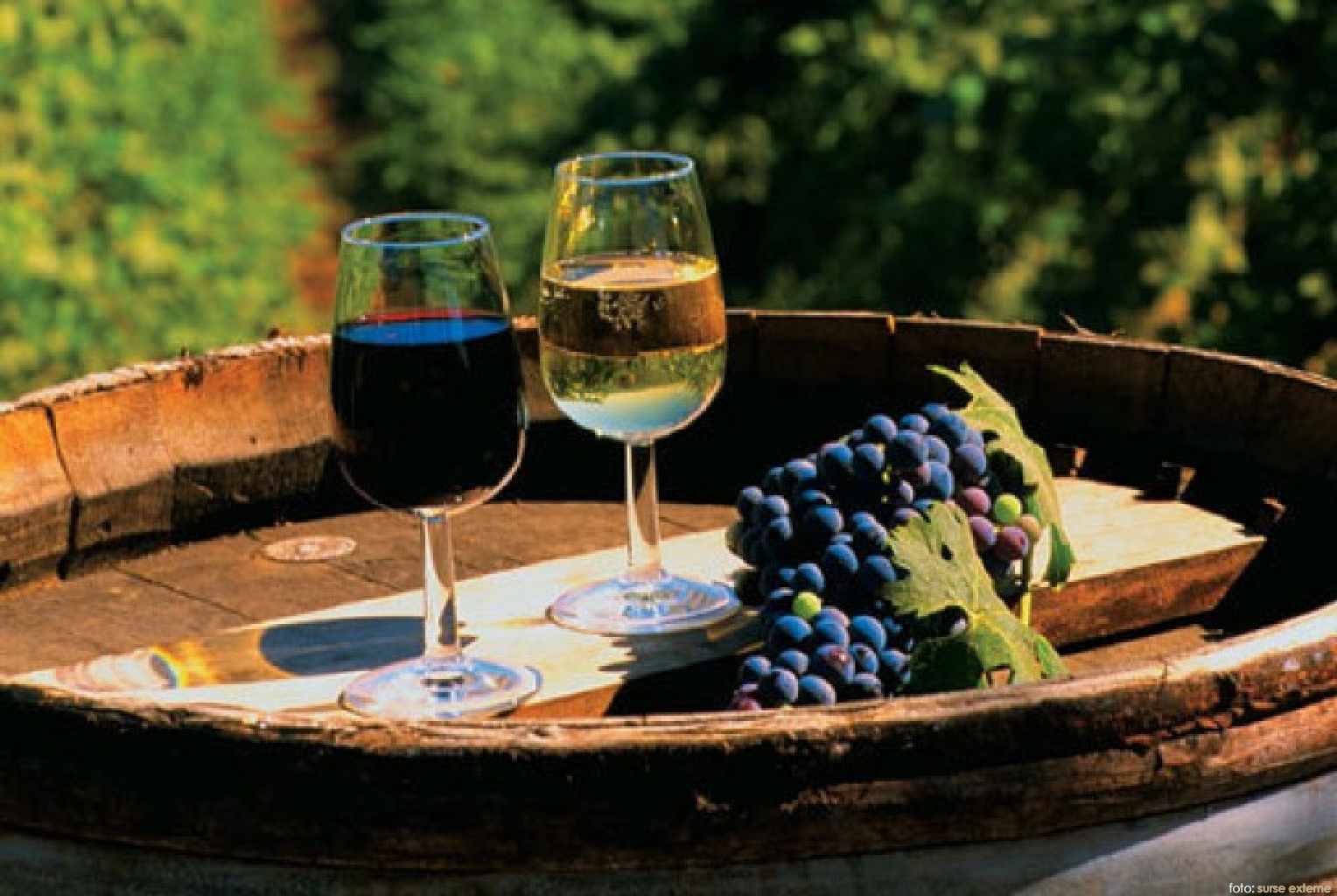 Moldova nu are nevoie de ziua vinului
